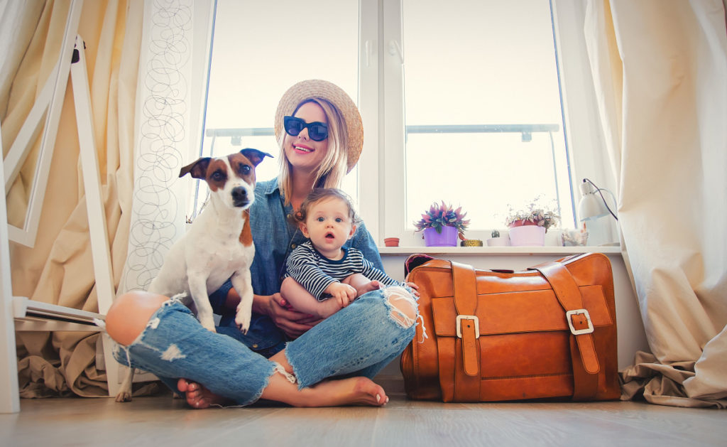 Traveling With Pets - Wildwood Veterinary Clinic