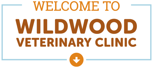 Welcome to Wildwood Veterinary Clinic