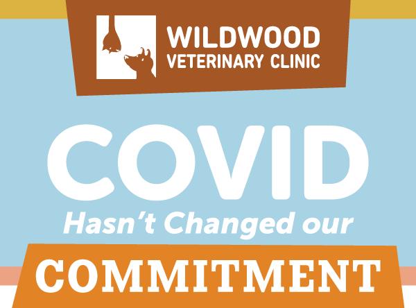 COVID Updates - Wildwood Veterinary Clinic